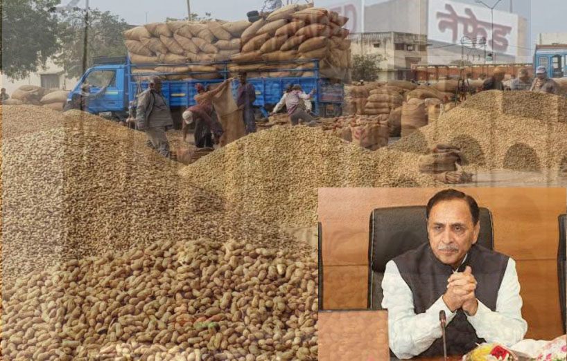 Godown fire: If Nafed is guilty, so is Rupani's govt